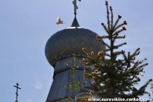 9 мая 2014 в Суровикино
